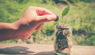 A hand puts a penny in a jar of pennies that has a green sprout growing out of it