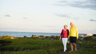 Senior couple walking along the Connecticut coastline