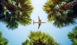 Airplane flying above tropical trees