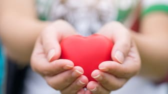 A person holds a red heart in their hands.