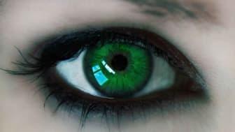 photo illustration of green eye of envy