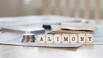 "picture of blocks spelling out ""alimony"""