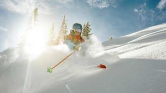 A skier blast through snow powder skiing down a Colorado mountain with bright sunshine behind him on a Colorado mountain