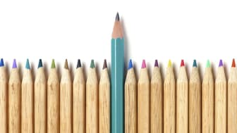 picture of many pencils with one pencil longer than the others