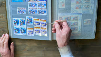 A person looks over their stamp collection.