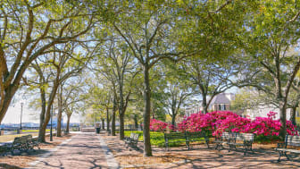 picture of park in South Carolina