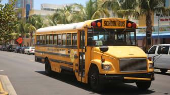 School bus in Florida