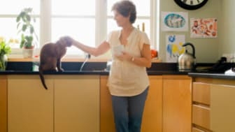 Woman petting cat in kitchen