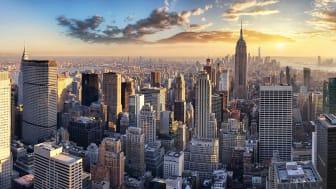 skyscrapers in a big city