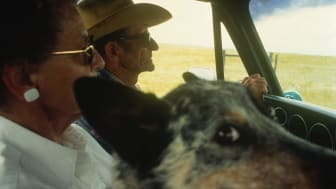 Senior couple in pick-up truck with dog, Keystone, Nebraska