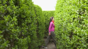 Hispanic woman walking in hedge maze