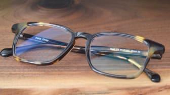 Photo of Felix Gray glasses