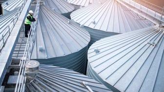 Photo of man looking at grain silos