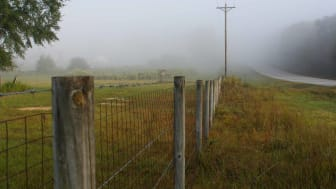 Fence line and rural road in foggy Alabama