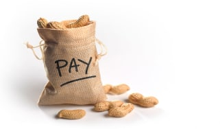 """picture of a bag of peanuts with """"pay"""" written on it"""