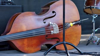 picture of a bass instrument