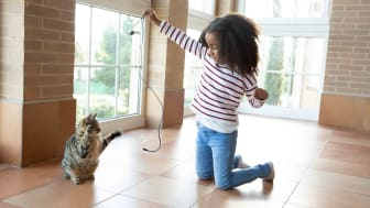 Little girl swinging cat toy for playtime