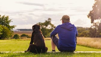 Senior man and his dog sit on the grass and look at the horizon