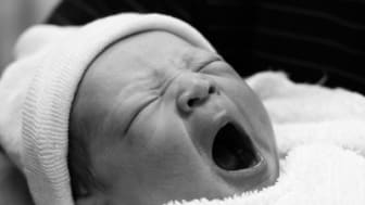 Newborn baby yawning.See also:[url=file_closeup.php?id=804344][img]file_thumbview_approve.php?size=1&id=804344[/img][/url] [url=file_closeup.php?id=804345][img]file_thumbview_approve.php?size