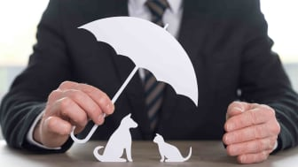 Man in suit holding a paper umbrella covering a paper cat and dog