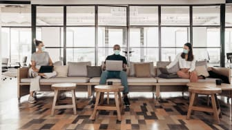 Socially distance workers using laptops in a modern office lounge