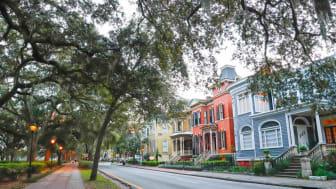 An historic street in Savannah, Ga.