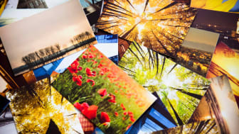A display of colorful photo prints