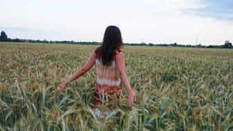 A woman runs her hands through wheat in a wheat field.