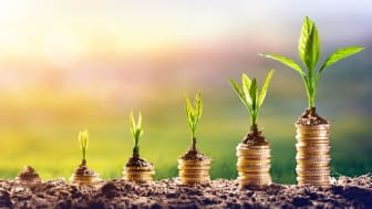 Growing Plant On Money - Finance Investment Concept