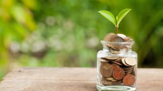 Plant Growing In Savings Coins on wooden - Investment And Interest Concept