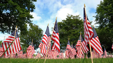 A field of flags