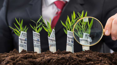 Close-up Of Businessman Holding Magnifying Glass In Front Of Money Plants