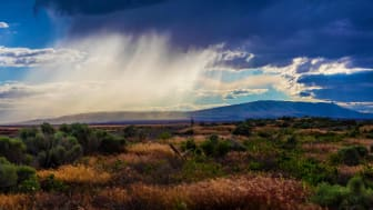 Lush fields of Richland, Washington with mountains and a storm in the background