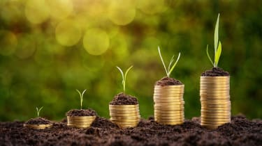 Investment concept, rising coins chart with growing plants over defocused nature background
