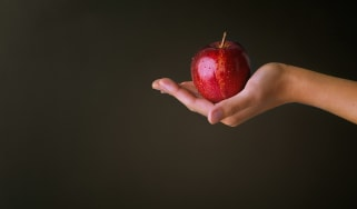 A hand holding a red apple