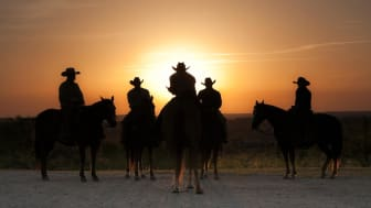Cowboys and cowgirl in silhouette at sunrise in Weatherford, Texas.