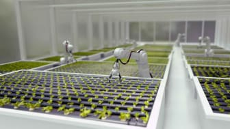 Robots tending to plants