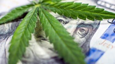 photo illustration of money and marijuana leaf