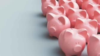 Photo of piggy banks