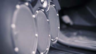 Car Audio System, Sound Speakers in the Open Door.