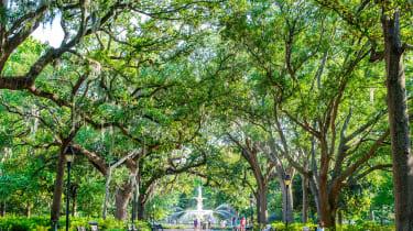 A scenic shot of Savannah, Georgia