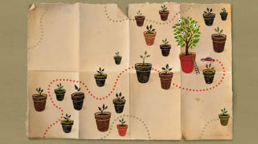 Illustration of several potted plants from seedlings to tree