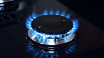 Natural gas burner flame on black stove