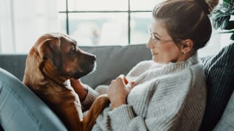 A woman and her dog gaze lovingly at each other on a couch.