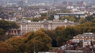 Buckingham Palace rises above the treetops of the Mall in London